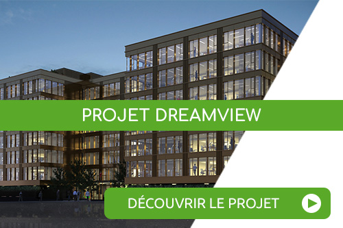 projet dreamview